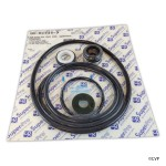 Sta-Rite DynaGlas pump seal go-kit