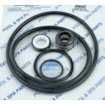 Sta-Rite Max-E-Glas II and Dura-Glas II pump seal go-kit for salt pool